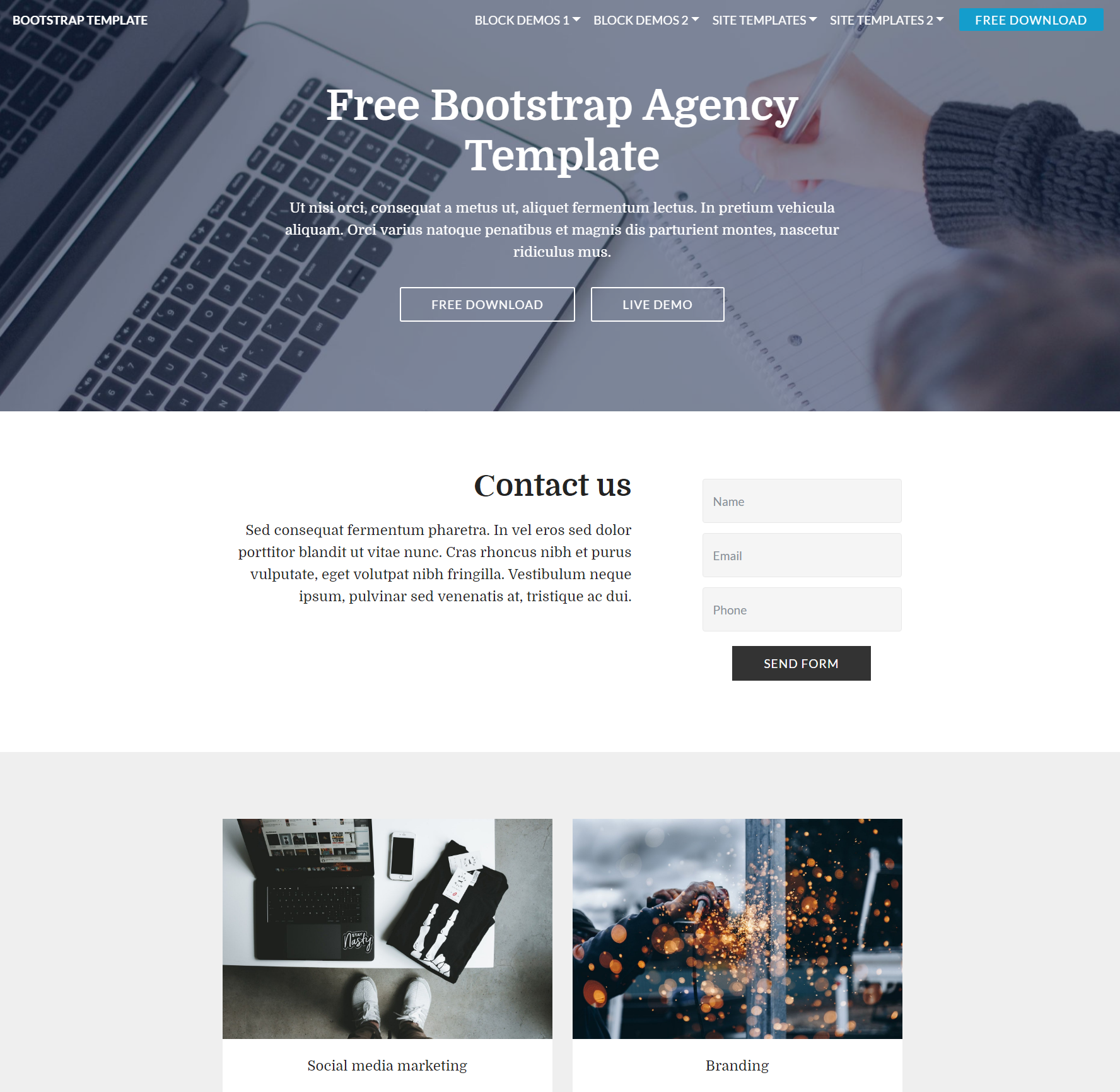 Free Download Bootstrap  Agency Templates