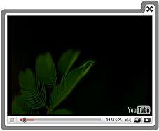 Html Code Embed Video Default Image Jquery Thumbnails Flv Videos